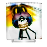 Chakra Warrior Shower Curtain
