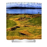 Chambers Bay Lone Tree Shower Curtain