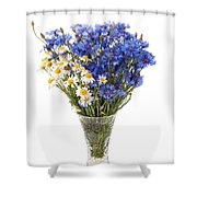 White Camomile And Blue Cornflower In Glass Vase  Shower Curtain