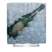 Champagne On Ice Shower Curtain
