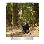Chance Encounter With The Hairy One Shower Curtain