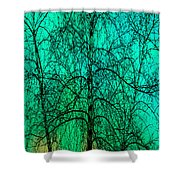 Change Of Seasons Shower Curtain by Bob Orsillo