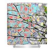 Change To Spring Shower Curtain