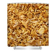 Chanterelle Mushroom Shower Curtain