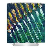 Chanukiah In The Dark Shower Curtain