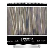 Character Shower Curtain