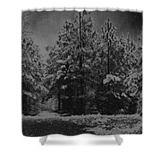 Charcoal Snowfall Shower Curtain