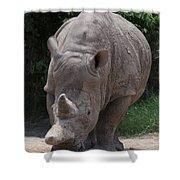 Waco Texas Rhinoceros Shower Curtain