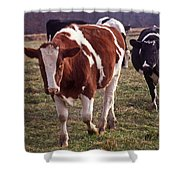 Charging Shower Curtain by Skip Willits