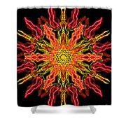 Chariot Of Sun Shower Curtain