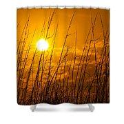 Charleston Beach Sunrise Shower Curtain