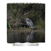 Charleston Birds Shower Curtain
