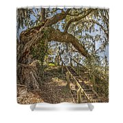 Charleston Oak Stairway Shower Curtain