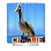 Charlie The Pelican Shower Curtain