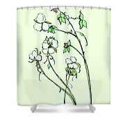 Charming Cotton Bolls Shower Curtain