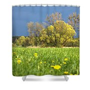 Charming View Shower Curtain