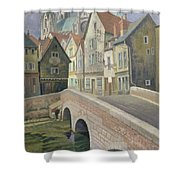 Chartres Shower Curtain