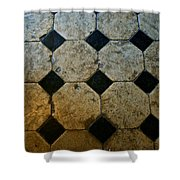 Chateau Brissac's Tile Floor Shower Curtain