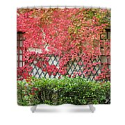 Chateau Chenonceau Vines On Wall Image One Shower Curtain