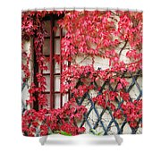 Chateau Chenonceau Vines On Wall Image Three Shower Curtain