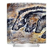 Chauvet Cave Auroch And Horses Shower Curtain