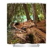 Cheakamus Lake Shoreline Shower Curtain