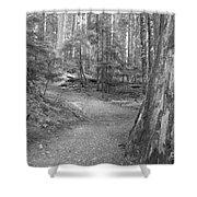 Cheakamus Trail In Black And White Shower Curtain