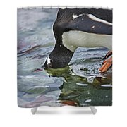 Checking For Orca... Shower Curtain