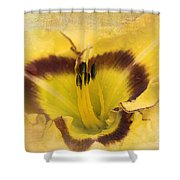 Cheerfully Yours Shower Curtain