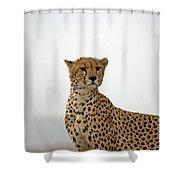 Cheetah In Serengeti. Shower Curtain