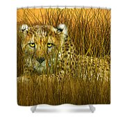 Cheetah - In The Wild Grass Shower Curtain