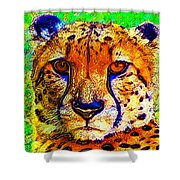 Face Of The Cheetah Shower Curtain