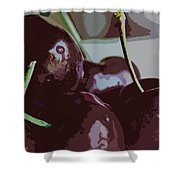 Cherries Abstract Shower Curtain