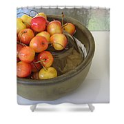 Cherries And Glass Filler Shower Curtain