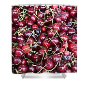 Cherries In Des Moines Washington Shower Curtain