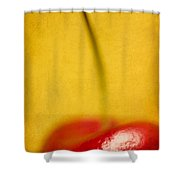 Cherry Bliss Shower Curtain by Amy Weiss