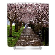 Cherry Blossom Friends Shower Curtain