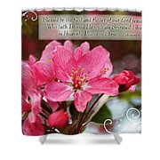 Cherry Blossom Greeting Card With Verse Shower Curtain