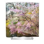 Cherry Blossom Land Shower Curtain