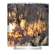 A Cherry Blossom Sunset Shower Curtain