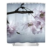 Cherry Blossom Sweetness Shower Curtain