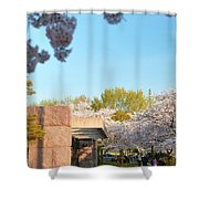 Cherry Blossoms 2013 - 021 Shower Curtain