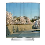 Cherry Blossoms 2013 - 022 Shower Curtain