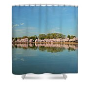 Cherry Blossoms 2013 - 026 Shower Curtain