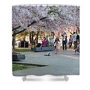 Cherry Blossoms 2013 - 069 Shower Curtain