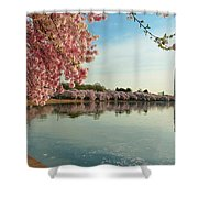 Cherry Blossoms 2013 - 084 Shower Curtain
