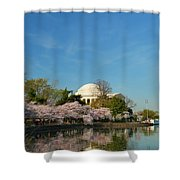 Cherry Blossoms 2013 - 098 Shower Curtain