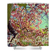 Cherry Blossoms And A Life Quote Shower Curtain