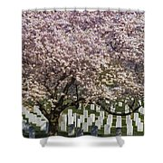 Cherry Blossoms Grace Arlington National Cemetery Shower Curtain