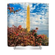 Cherry Blossoms In Washington Shower Curtain